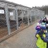 Odwiedzamy Schronisko dla Zwierząt